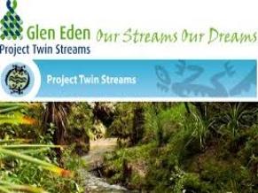 Project Twin Streams